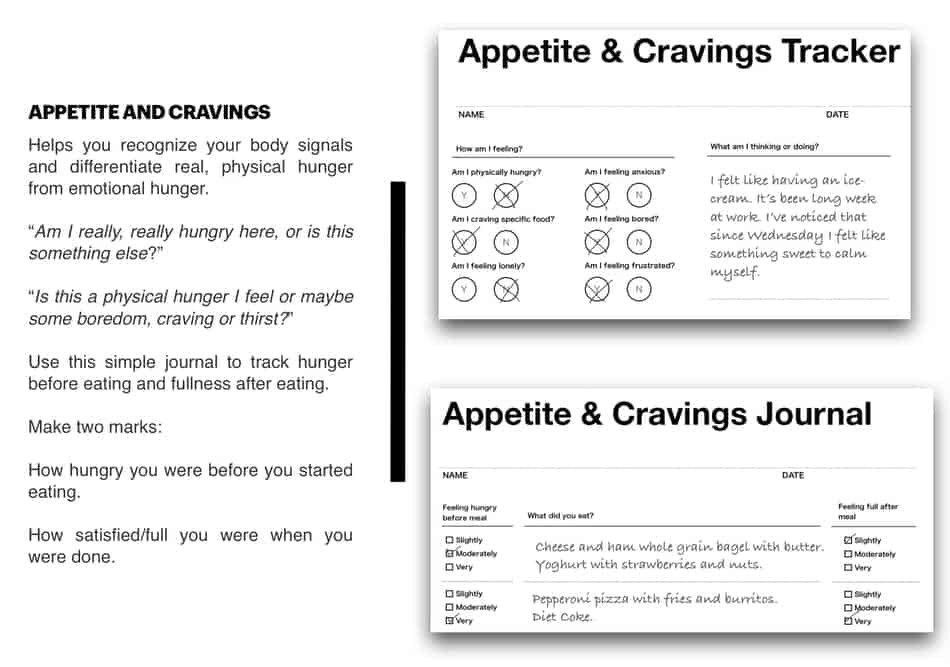 picture of appetite journal