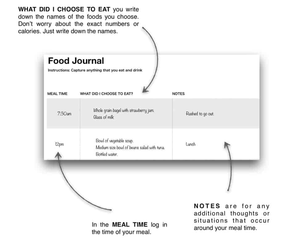 photo of food journal