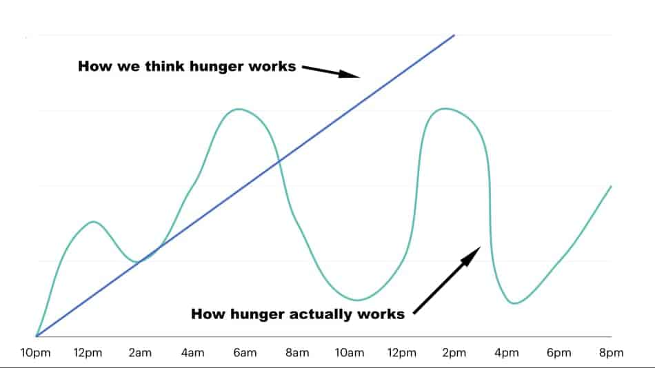 the hunger graph in omad and how long it take