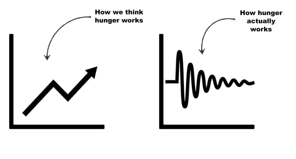 comparison of hunger during the day