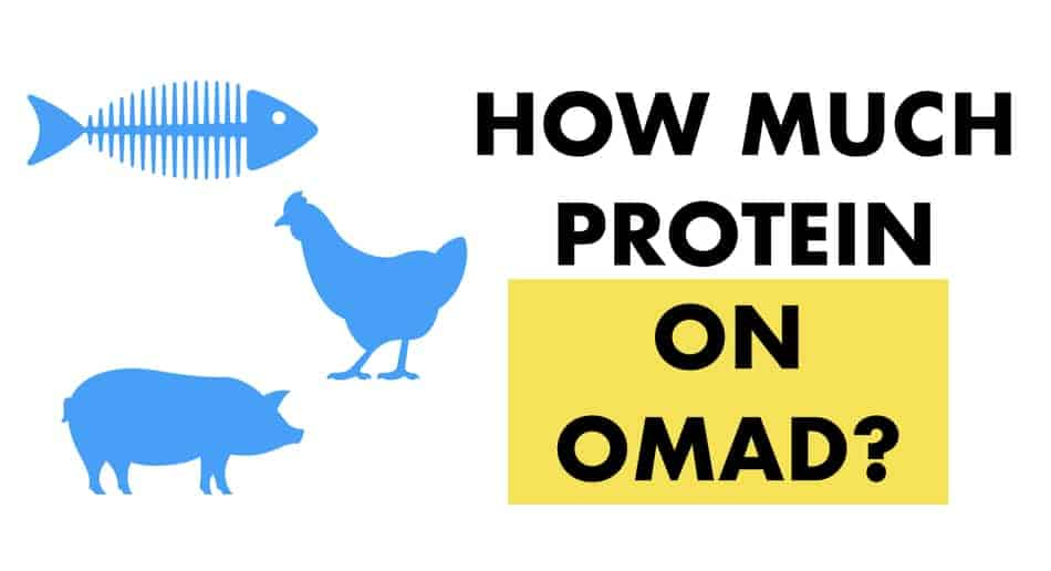 how much proteins on omad