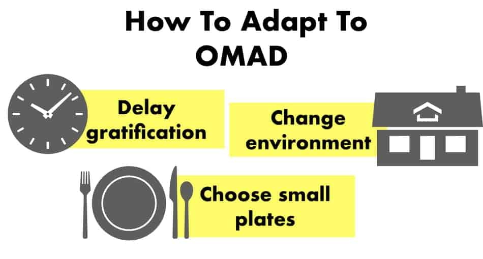 how to adapt to omad diet