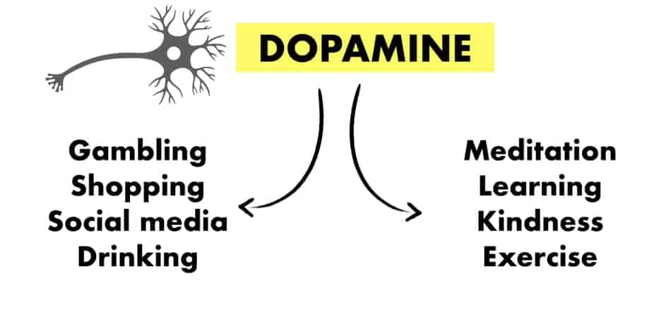 how to start omad with dopamine
