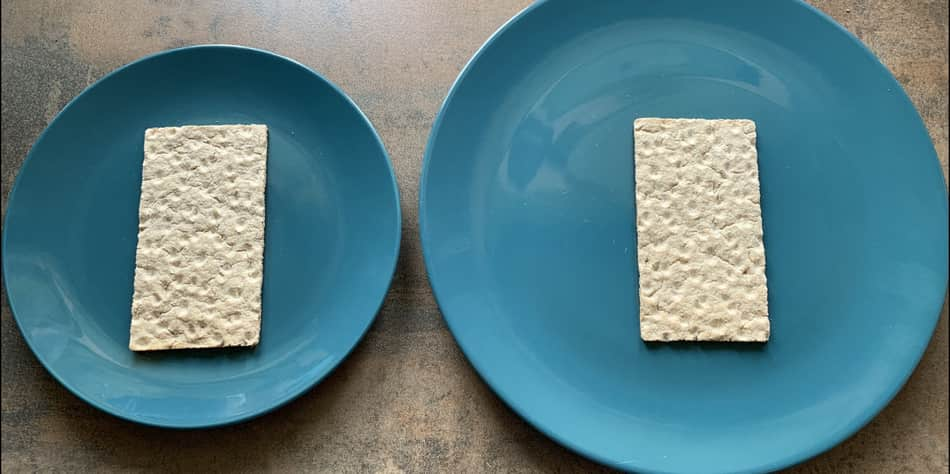 two plates different sizes