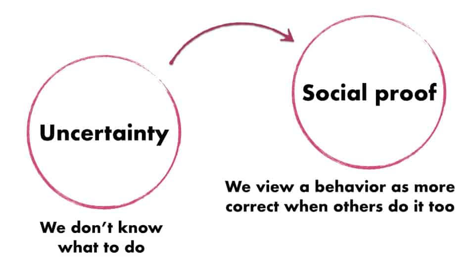 social proof effect