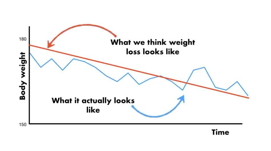 picture of the graph