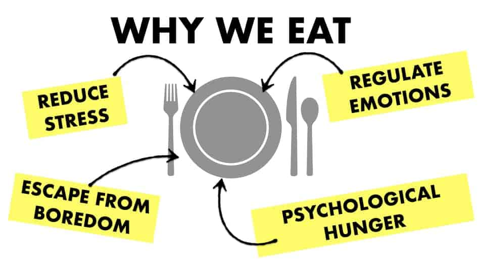 why people eat