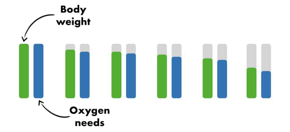 picture of the column of how we lose weight and our body decrease needs for oxygen