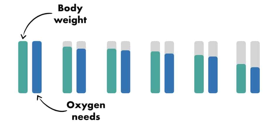 graph of weight loss and decrease of oxygen needs