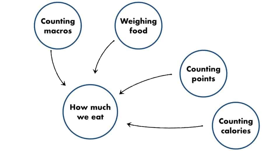 picture of counting calories as one of many ways to track food intake